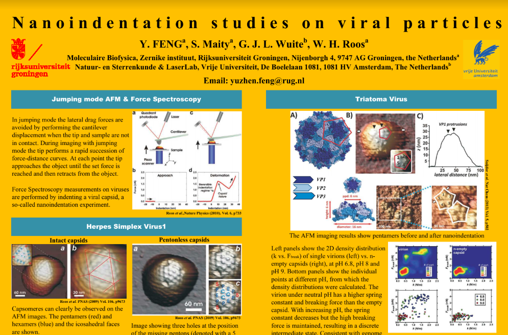 RUG poster presentation on VIRUSCAN work on the Dutch SPM Day 2018, Utrecht University, November 9th 2018